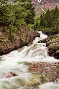 Wilbur Creek, Glacier National Park
