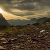 Hoary Marmot At Sunrise