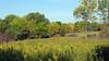 478 Frontenac State Park, MN