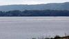 490 American Pelican flock, Lake Pepin