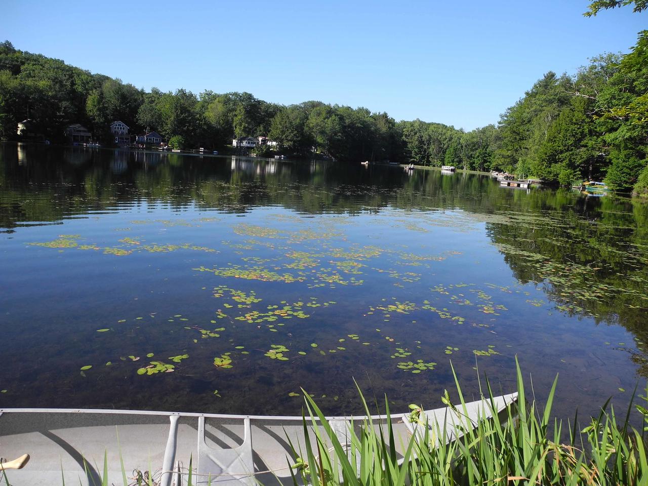 538 A perfect lake scene