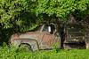 Scenery, rusty old truck