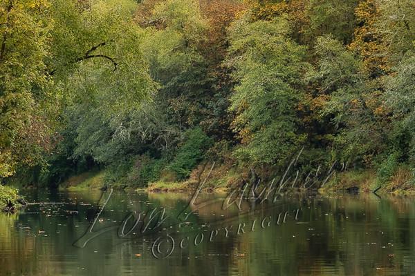 Scenery, autumn, fall, Chehalis River