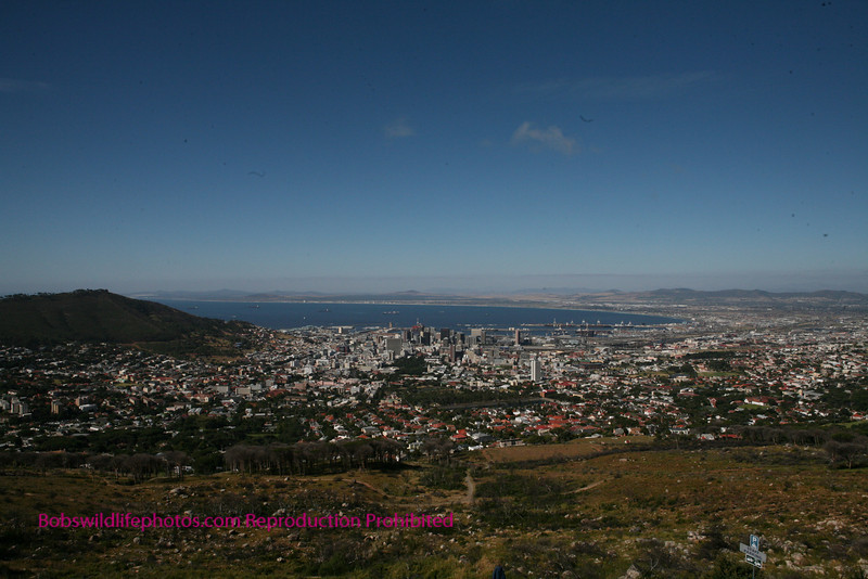 Cape Town shot from base of Table Mountain