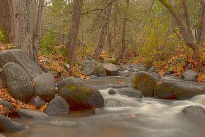 Ashland Creek