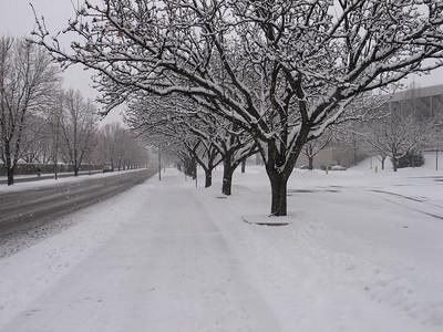 Snow_4417.JPG