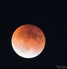 The Blood Moon! Taken in September.