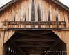 """""""Cilleyville Bog Bridge"""" sign on the eastern end"""