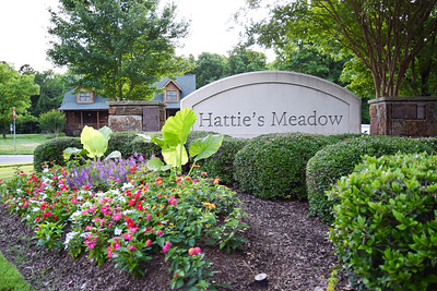 Hattie's Meadow
