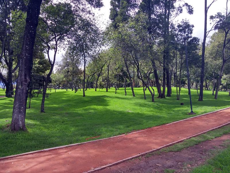 ParqueSimonBolivar15