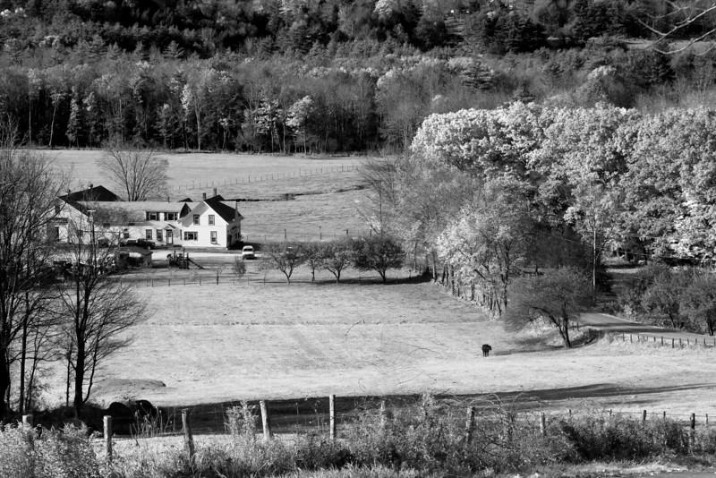 Hillsboro N.H.