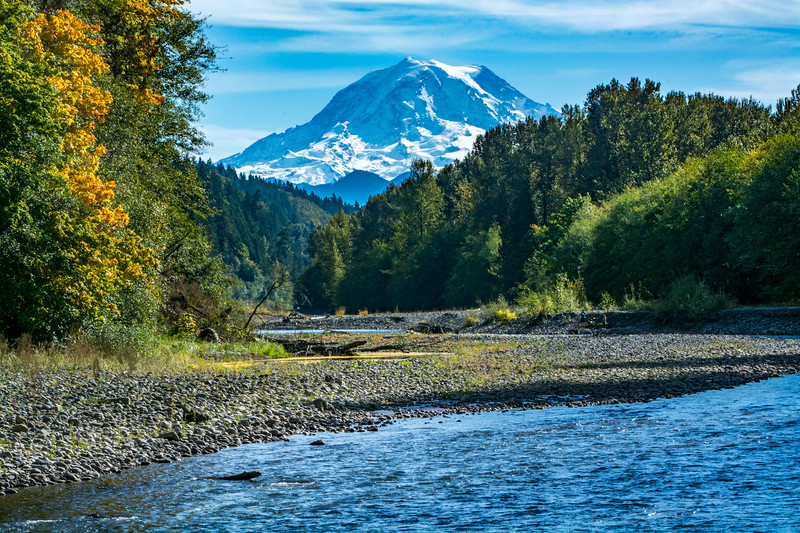 Mount Rainier Backdrops Its Carbon River