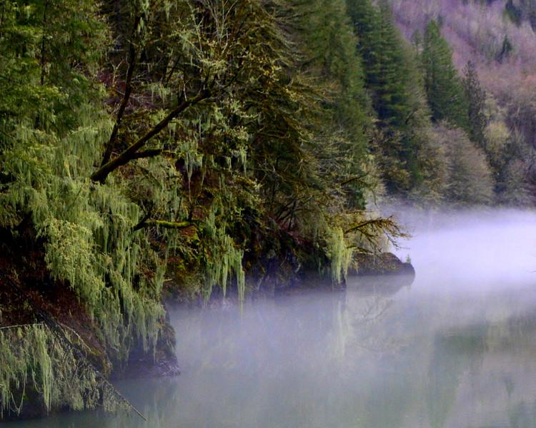 Cowlitz River Mist