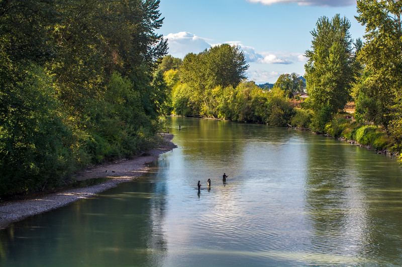Puyallup's River