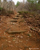 Old railroad ties used as steps in the trail