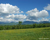 The White Mountains from the side of the road in Sugarhill, NH