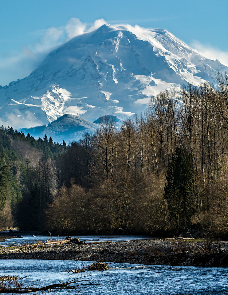 Mount Rainier Carbon River Portrait