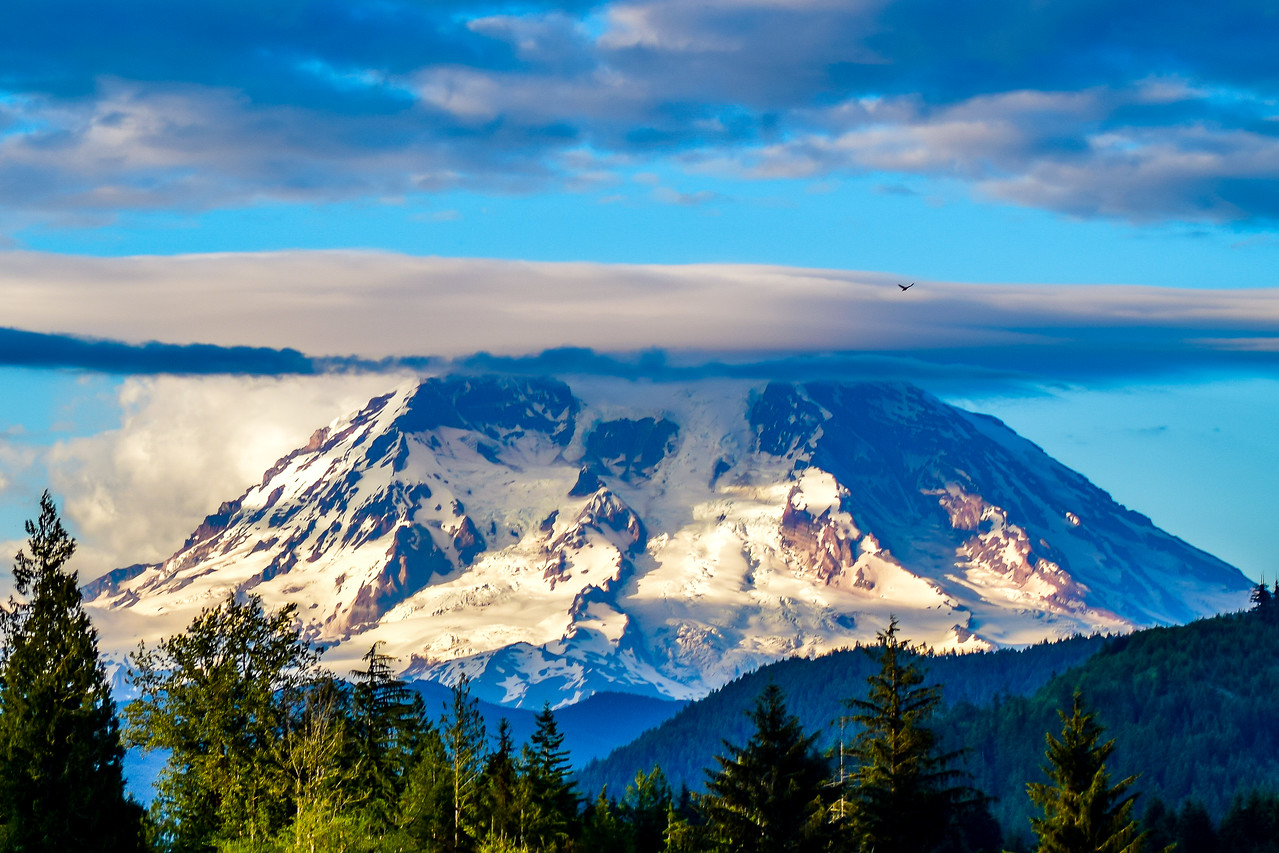 Mount Rainier Mineral Washington