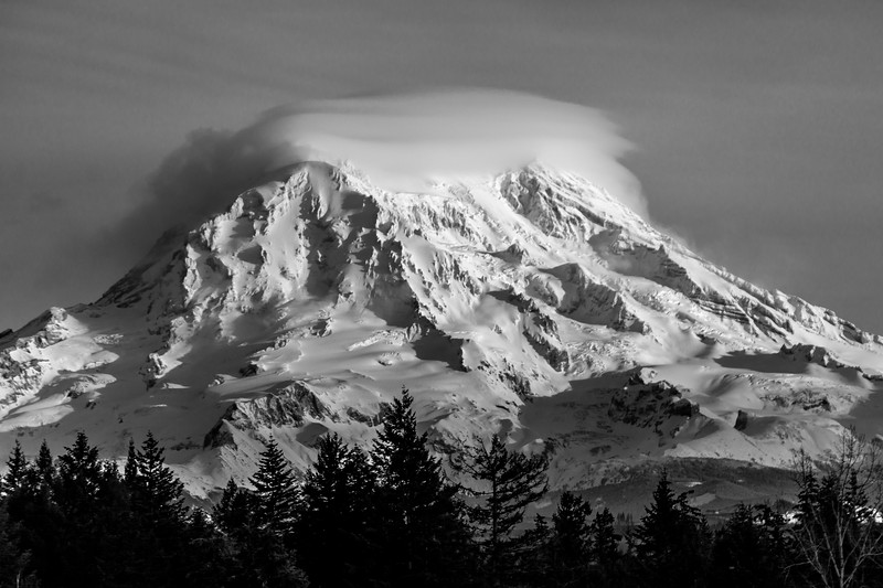 Mount Rainier Contrasts