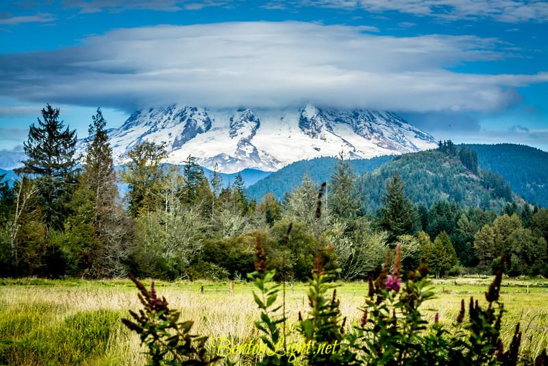 Mount Rainier Presentation