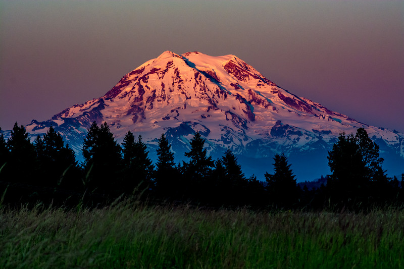 A Mount Rainier Evening
