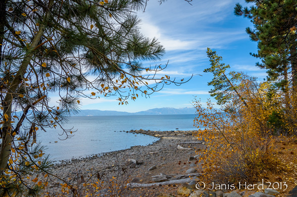 Fall Color, Lake Tahoe, Nevada