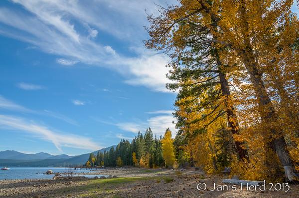 Fall color, Lake Tahoe, Nevada
