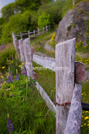 18. Wooden Fence