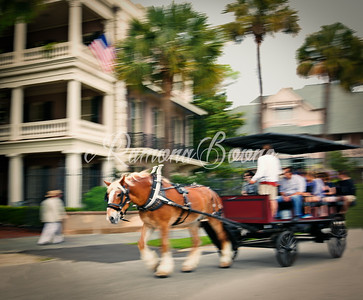 15. Charleston Carriage Ride
