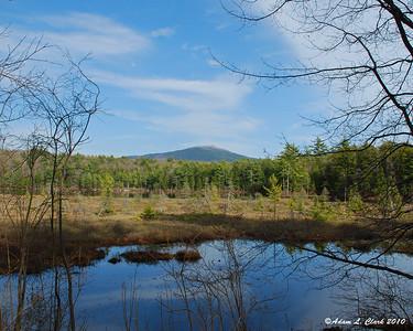 Ponds & Lakes