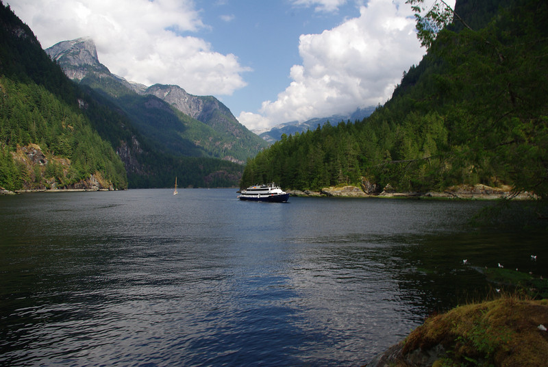 A pocket cruise vessel departs Princess Louisa Inlet in fall /09.