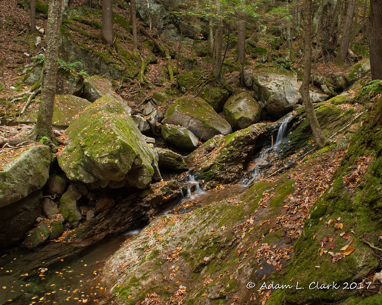 The uppermost cascades that I found.  I walked through the woods a ways and then up the stream to reach this point