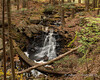Perkins Pond Falls - View from the trail