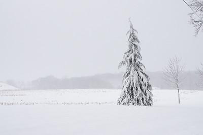 Snow Scenes 22March2018