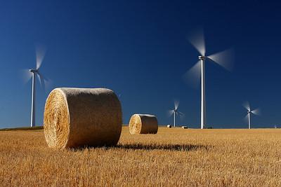 Southern Alberta Wind Turbines