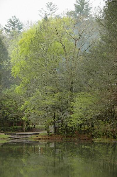 Spring 2008 36