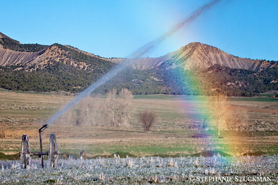 Irrigation Water Rainbow