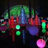 Christmas glow 2014 Missouri Botanical Gardens