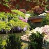 Japanese Gardens , Missouri Botanical Gardens,  spring