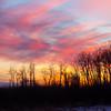 TWBPhotoGallery-8409