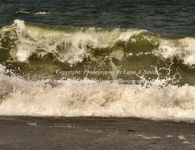 Wave 4 - Oregon