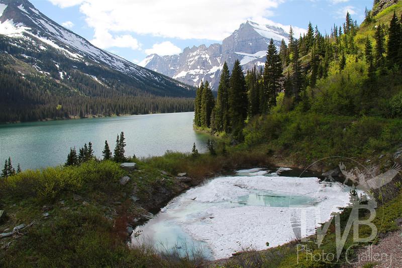 glacier ice , Lake Josephine, Glacier N.P., Montana