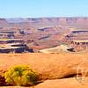 a Canyonlands view, Utah