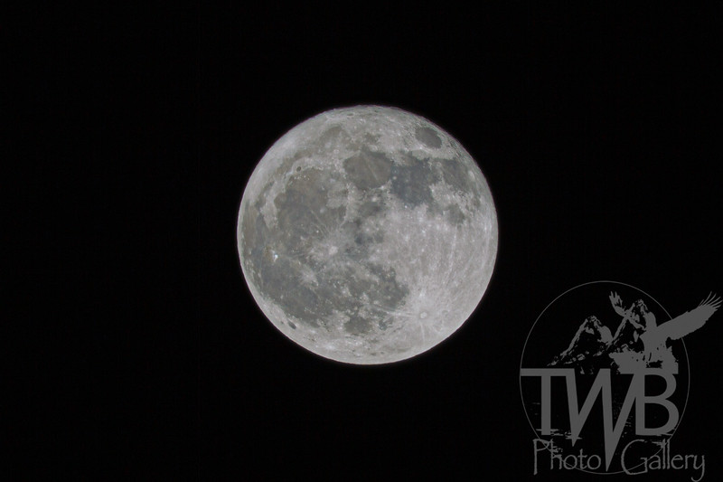 TWBPhotoGallery-9308