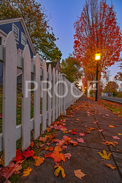 Fall Season in Port Gamble, Washington