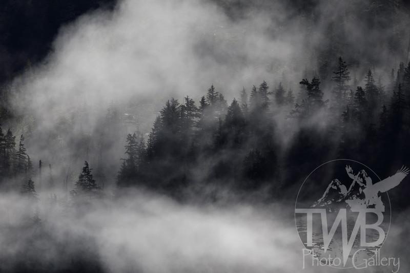 TWBPhotoGallery-2681