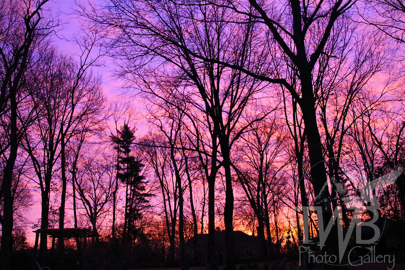 """ Purple Days "" : sunrise in Kirkwood"