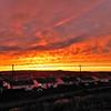 Sunset over Paradise, NL, Canada