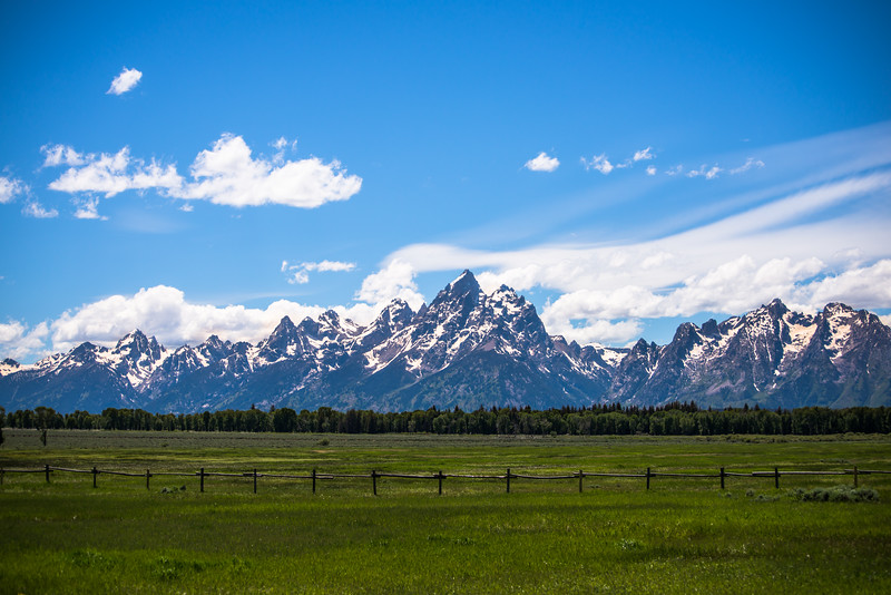 Grand Tetons behind a field