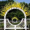 the arches, Missouri Botanical Gardens, St. Louis ,Mo.